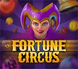Machines à sous dans notre casino 1